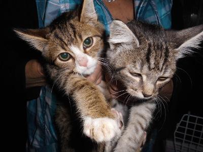 Kira und Felix_HP